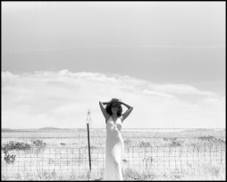 Snapseed (20)